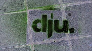 dju-Logo schwarz auf Steinpflaster